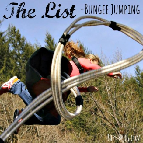 Bungee Title